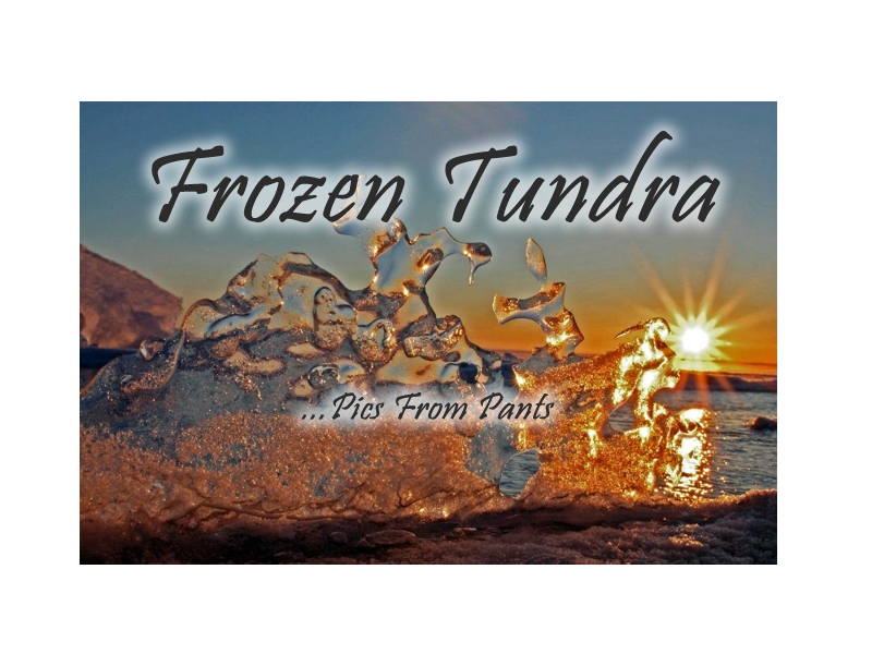 Enter Frozen Tundra Gallery